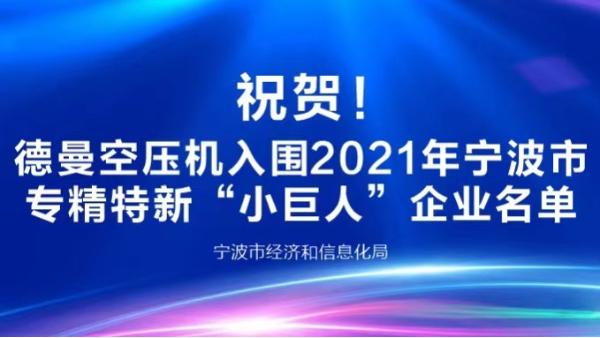 """祝贺!德曼登榜2021年宁波专精特新""""小巨人""""企业"""
